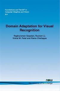 Domain Adaptation for Visual Recognition