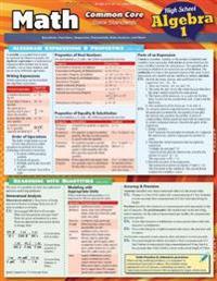 Math Common Core Algebra 1 - 9th Grade