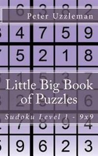 Little Big Book of Puzzles: Sudoku Level 1 16x16