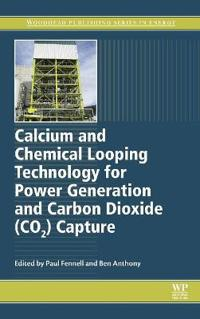Calcium and Chemical Looping Technology for Power Generation and Carbon Dioxide Co2 Capture