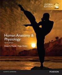 Human Anatomy & Physiology with MasteringA&P, Global Edition