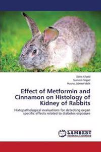 Effect of Metformin and Cinnamon on Histology of Kidney of Rabbits
