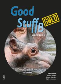Good Stuff Gold B workbook