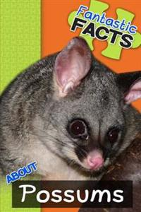 Fantastic Facts about Possums: Illustrated Fun Learning for Kids