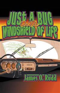 Just a Bug on the Windshield of Life