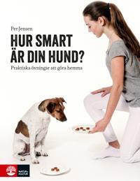 Hur smart är din hund