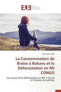 La Consommation de Braise � Bukavu Et La D�forestation En Rd Congo
