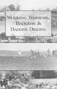 Working Terriers, Badgers And Badger Digging