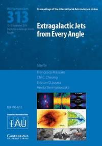 Extragalactic Jets from Every Angle