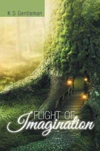 Flight of Imagination