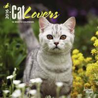 Cat Lovers 2016 Calendar