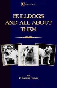 Bulldogs and All about Them: Bulldog/French Bulldog