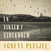 En vinter i Stockholm