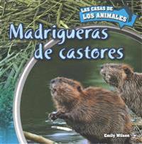 Madrigueras de Castores (Inside Beaver Lodges)