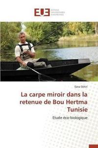 La Carpe Miroir Dans La Retenue de Bou Hertma Tunisie