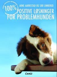 100% positiv problemløsning