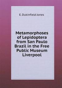Metamorphoses of Lepidoptera from San Paulo Brazil in the Free Public Museum Liverpool