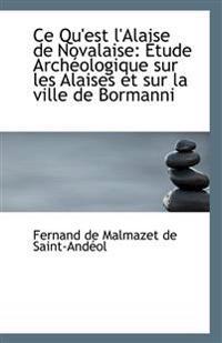 Ce Qu'est l'Alaise de Novalaise: Étude Archéologique sur les Alaises et sur la ville de Bormanni