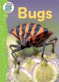 Tadpoles learners: bugs
