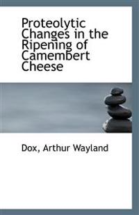 Proteolytic Changes in the Ripening of Camembert Cheese