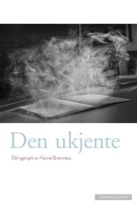 Den ukjente - Hanne Bramness pdf epub
