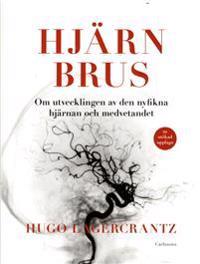 Hjärnbrus : om utvecklingen av den nyfikna hjärnan och medvetandet