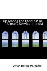 Up Among the Pandies
