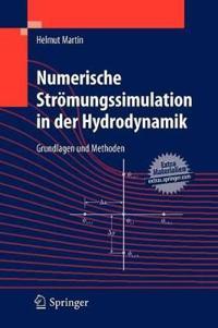 Numerische Stromungssimulation in Der Hydrodynamik