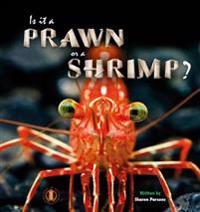 Is it a Prawn or a Shrimp?