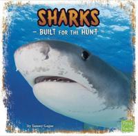 Sharks - built for the hunt