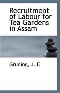 Recruitment of Labour for Tea Gardens in Assam