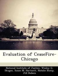 Evaluation of Ceasefire-Chicago