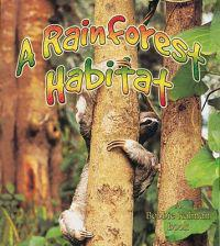 A Rainforest Habitat