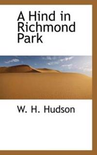 A Hind in Richmond Park