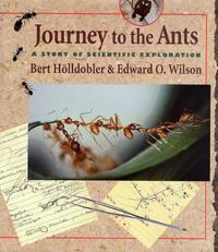 Journey to the ants - a story of scientific exploration