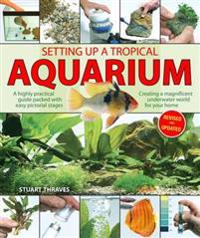 Setting up a tropical aquarium - a highly practical guide packed with easy
