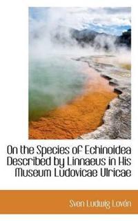On the Species of Echinoidea Described by Linnaeus in His Museum Ludovicae Ulricae