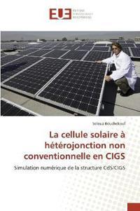 La Cellule Solaire a Heterojonction Non Conventionnelle En Cigs