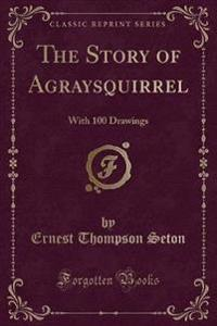 The Story of Agraysquirrel