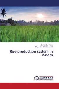 Rice Production System in Assam
