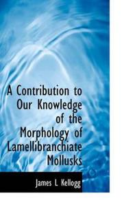 A Contribution to Our Knowledge of the Morphology of Lamellibranchiate Mollusks