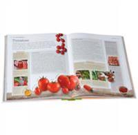 Allotment handbook - the beginners guide to growing crops in a small place