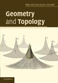reid szendroi geometry and topology pdf
