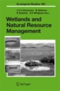 Wetlands and Natural Resource Management