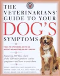 Veterinarians' Guide to Your Dog's Symptoms