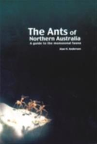 Ants of Northern Australia
