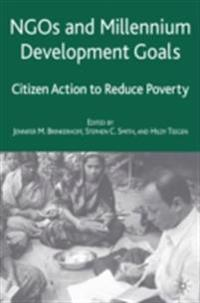 NGOs and the Millennium Development Goals