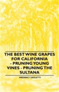Best Wine Grapes for California - Pruning Young Vines - Pruning the Sultana