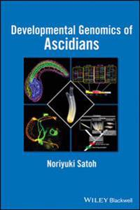 Developmental Genomics of Ascidians