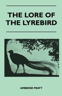 Lore of the Lyrebird